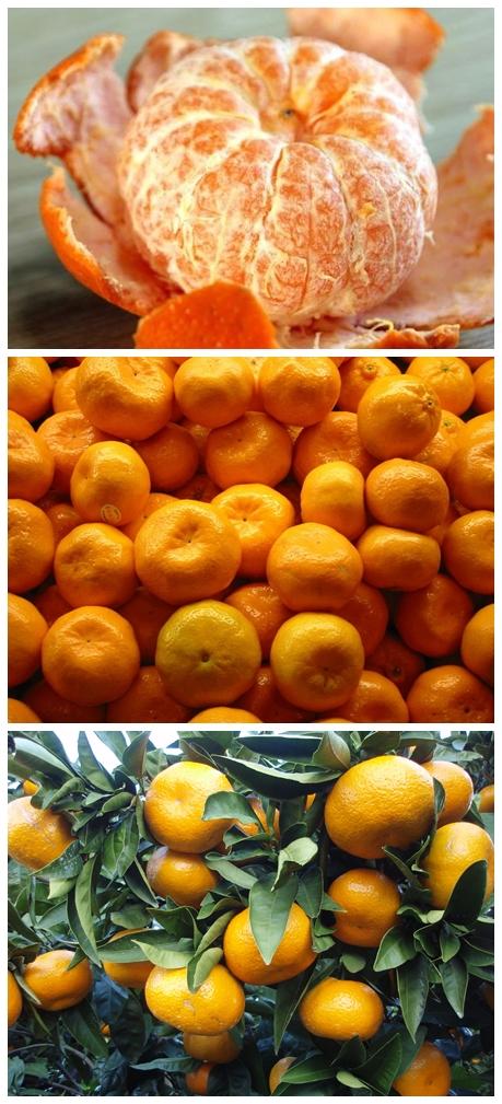 мандарин полезные свойства и противопоказания